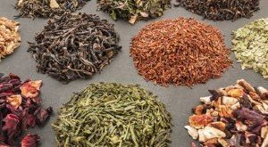 Teesorten Stoffwechsel