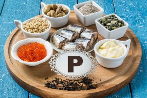 Lebensmittel Stoffwechsel