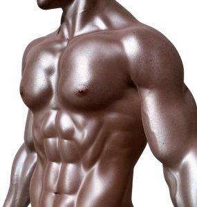Muskelaufbaumittel