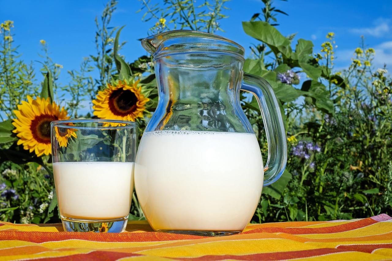 Milch gesund